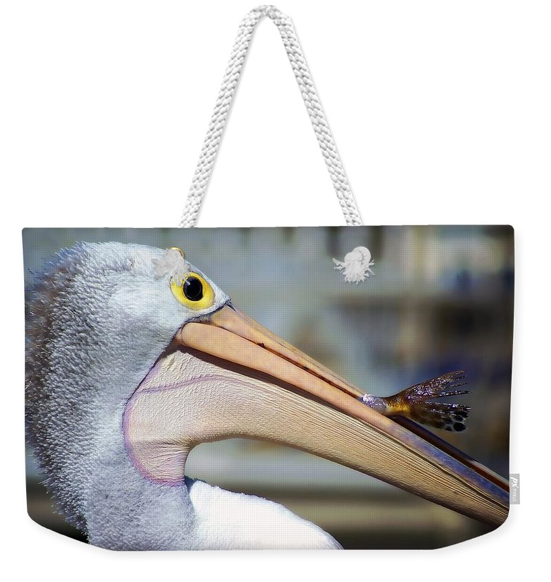 Dreamscope Photography Weekender Tote Bag featuring the photograph Catch Of The Day by Kathryn Potempski