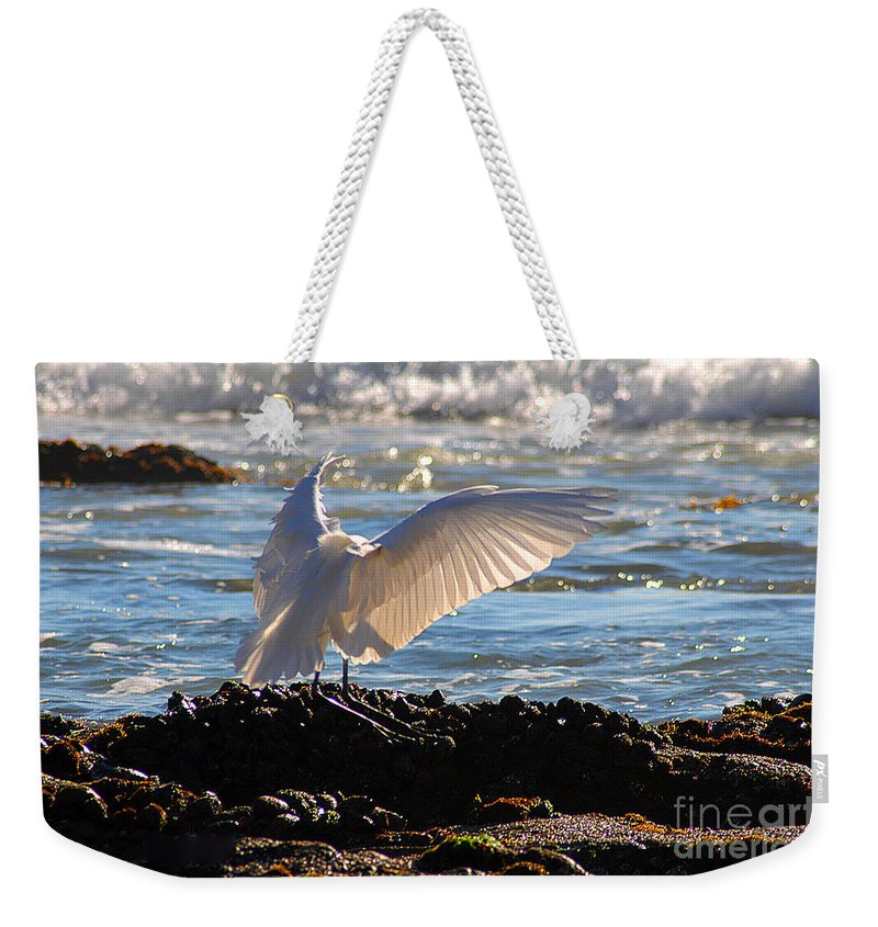 Clay Weekender Tote Bag featuring the photograph Catching Rays At The Beach by Clayton Bruster