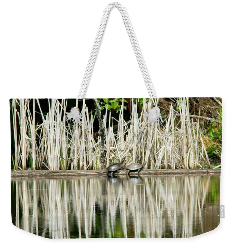 Naturescape Weekender Tote Bag featuring the photograph Cattail Reflection by Randall Ingalls