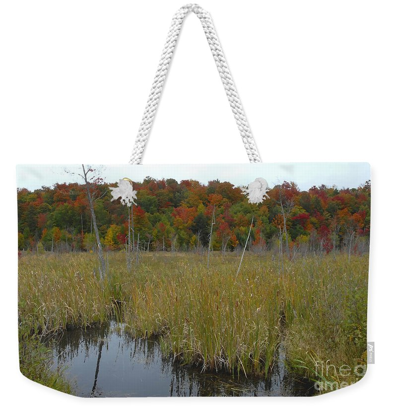 Cattails Weekender Tote Bag featuring the photograph Cattails by David Lee Thompson