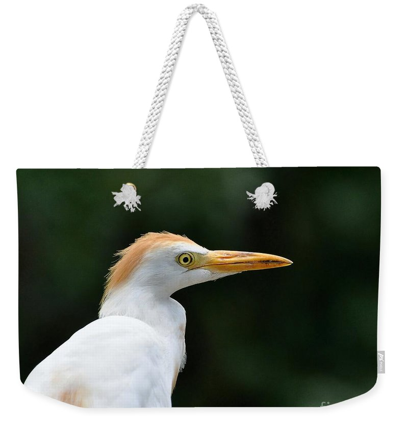 Egret Weekender Tote Bag featuring the photograph Cattle Egret Close-up by Al Powell Photography USA
