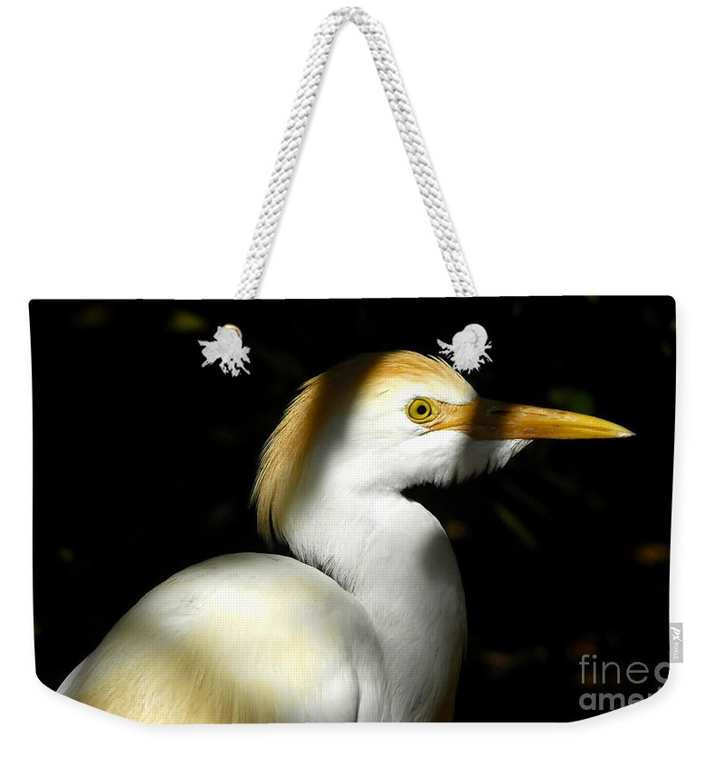 Cattle Egret Weekender Tote Bag featuring the photograph Cattle Egret In Shadow by David Lee Thompson