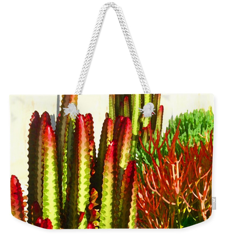 Landscape Weekender Tote Bag featuring the painting Catus Garden by Amy Vangsgard