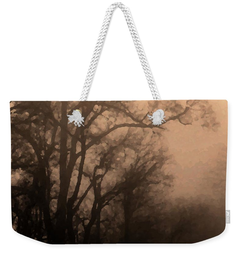Soft Weekender Tote Bag featuring the photograph Caught Between Light And Dark by Amanda Barcon