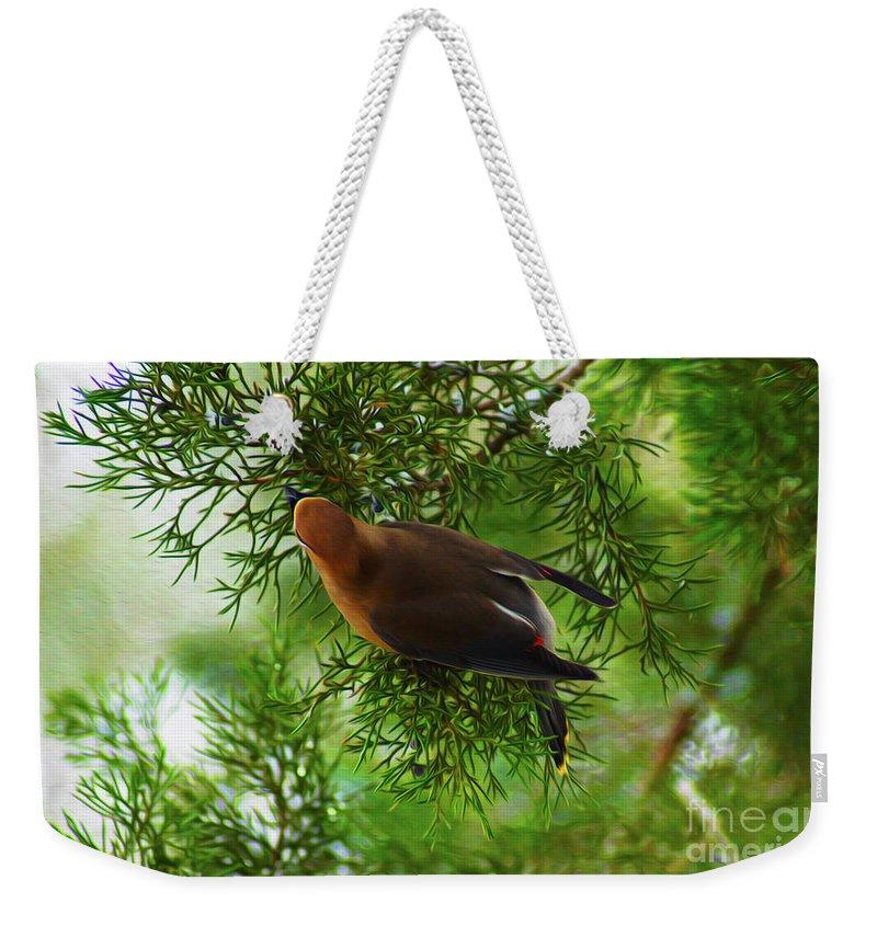 Birds Weekender Tote Bag featuring the digital art Cedar Waxwing Beauties 1 by Kim Pate