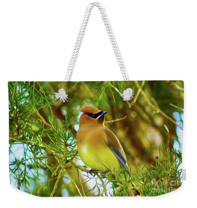 Birds Weekender Tote Bag featuring the digital art Cedar Waxwing Beauties 17 by Kim Pate