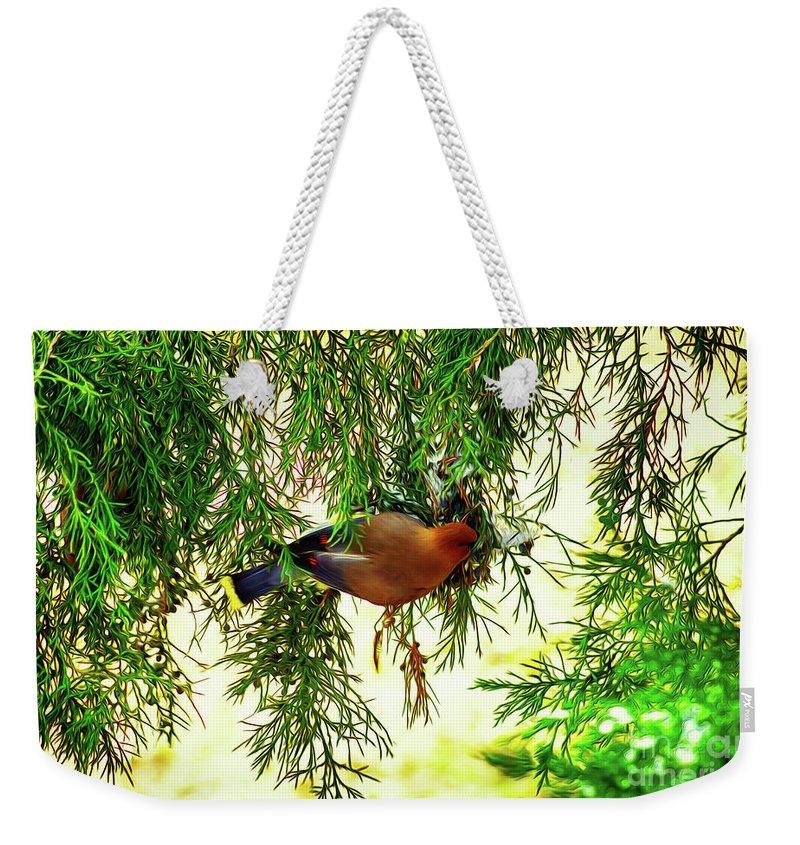 Birds Weekender Tote Bag featuring the digital art Cedar Waxwing Beauties 19 by Kim Pate
