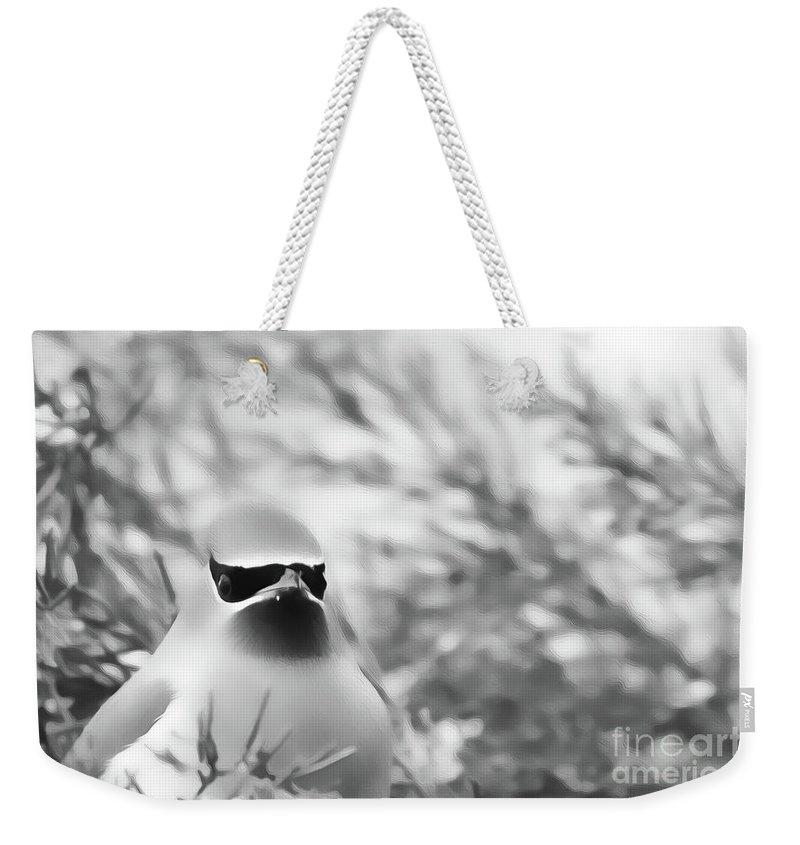 Birds Weekender Tote Bag featuring the digital art Cedar Waxwing Beauties 5 by Kim Pate