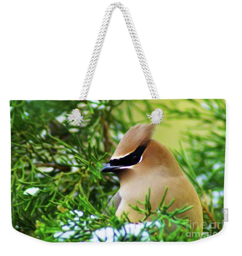 Birds Weekender Tote Bag featuring the digital art Cedar Waxwing Beauties 6 by Kim Pate