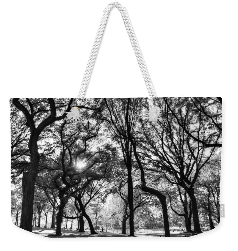 Central Park Weekender Tote Bag featuring the photograph Central Park In Black And White by Bob Cuthbert