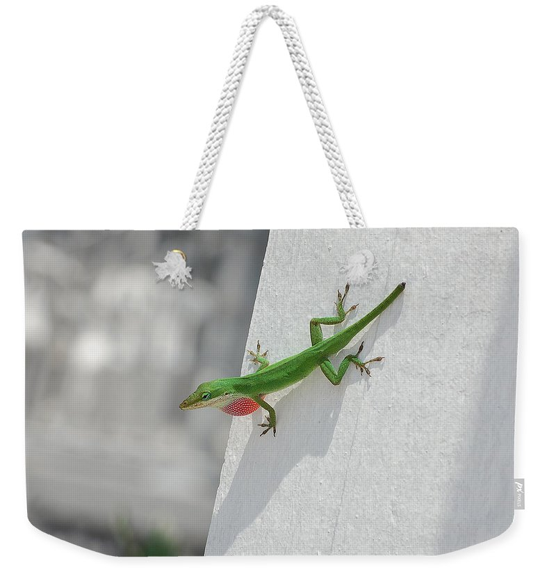 Chameleon Weekender Tote Bag featuring the photograph Chameleon by Robert Meanor