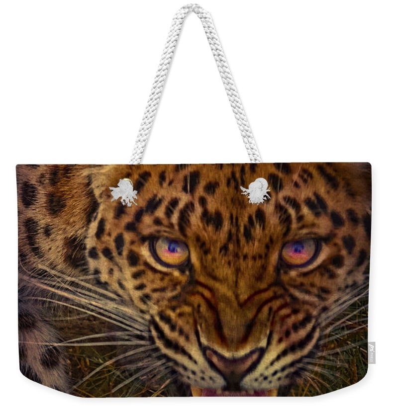 Amur Weekender Tote Bag featuring the photograph Chance Encounter by Chris Lord