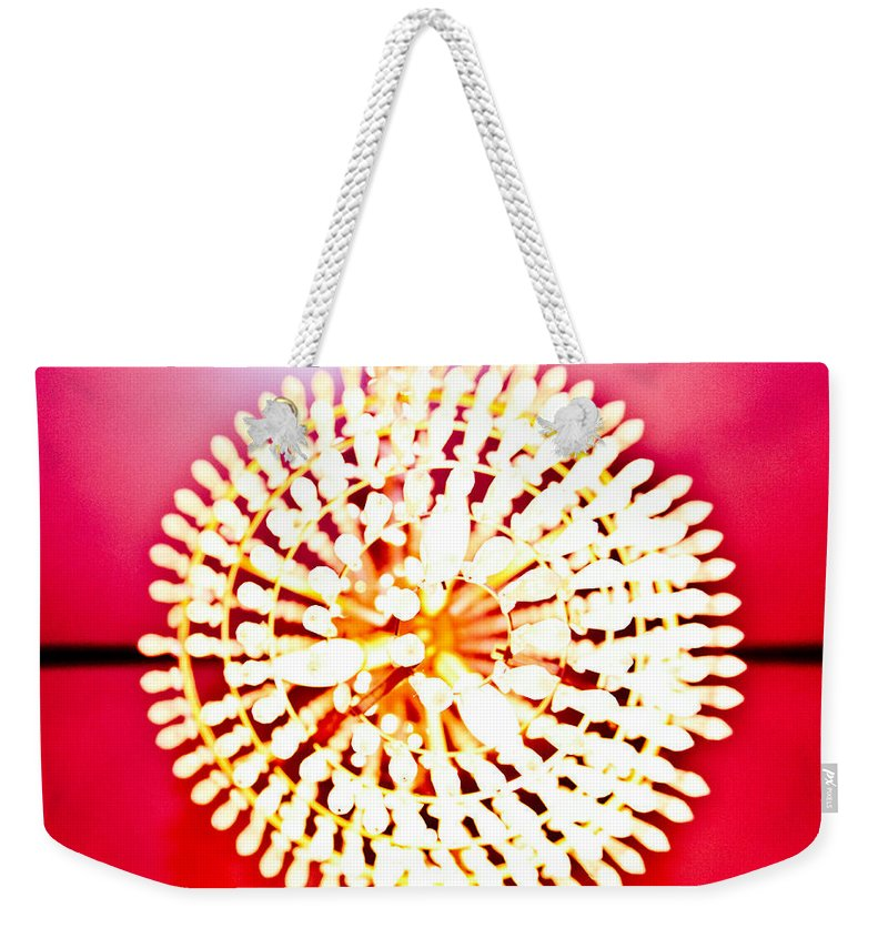 Chandelier Weekender Tote Bag featuring the photograph Chandelier by Scott Sawyer