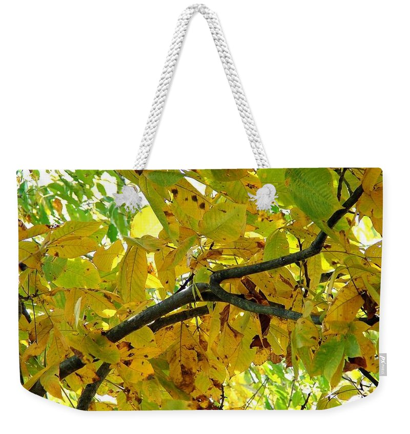 Weekender Tote Bag featuring the photograph Changes by Luciana Seymour