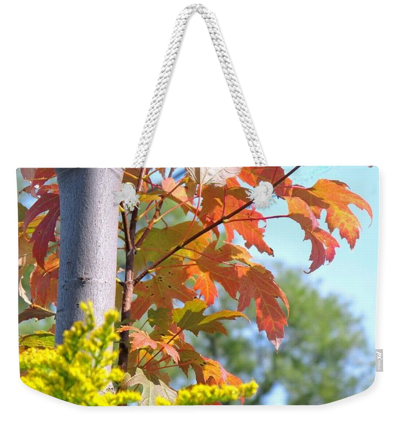 Maple Weekender Tote Bag featuring the photograph Changing Leaves by Ian MacDonald