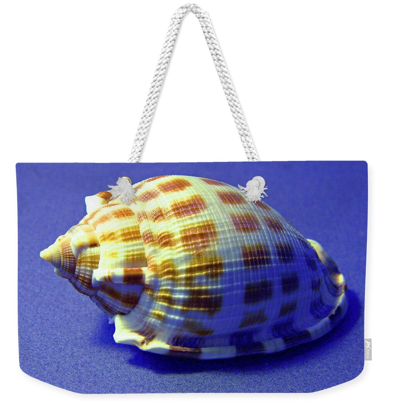 Frank Wilson Weekender Tote Bag featuring the photograph Checkered Helmet Seashell by Frank Wilson