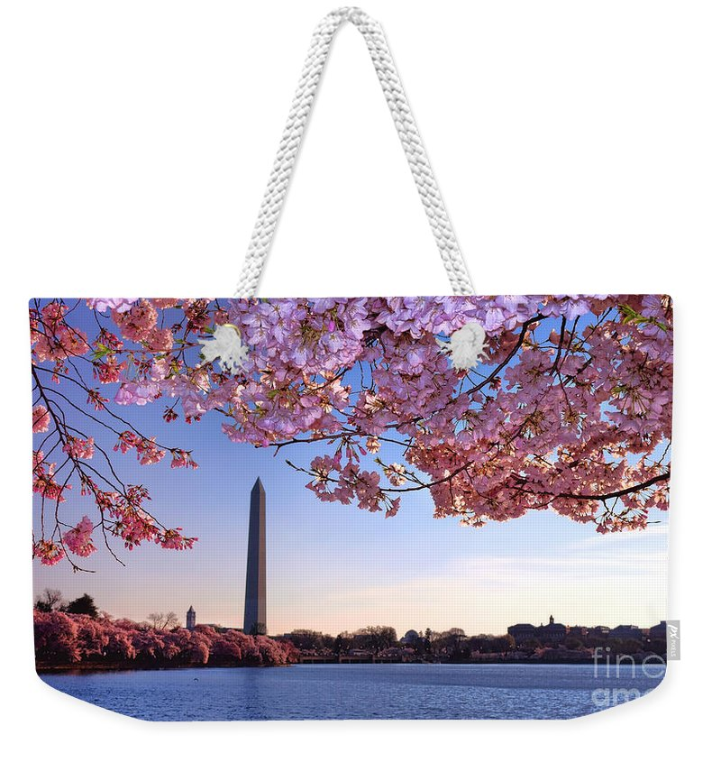 Cherry Blossom Festival Weekender Tote Bags