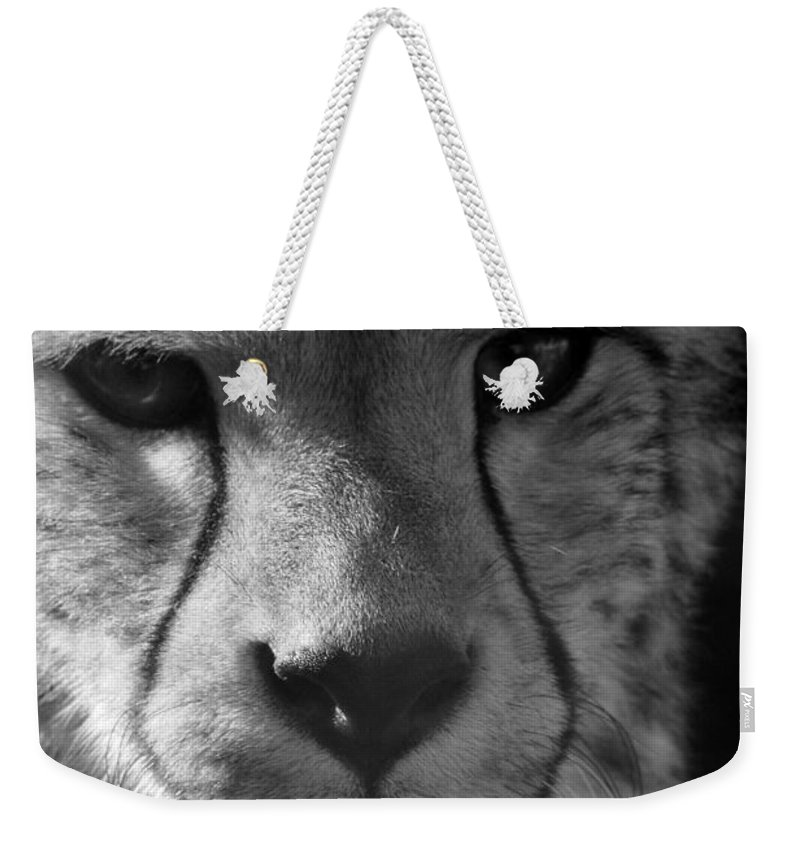 Cheetah Weekender Tote Bag featuring the photograph Cheetah Black And White by Karen Adams