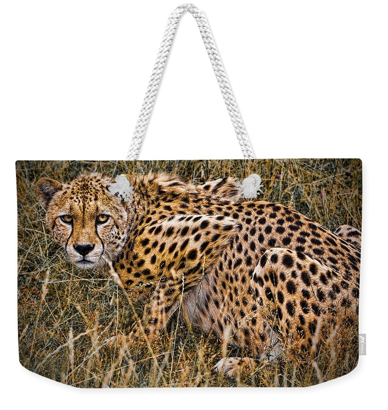 Big Weekender Tote Bag featuring the photograph Cheetah In The Grass by Chris Lord