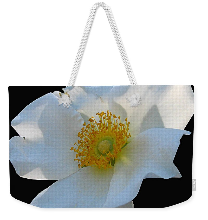 Cherokee Rose Weekender Tote Bag featuring the photograph Cherokee Rose On Black by J M Farris Photography