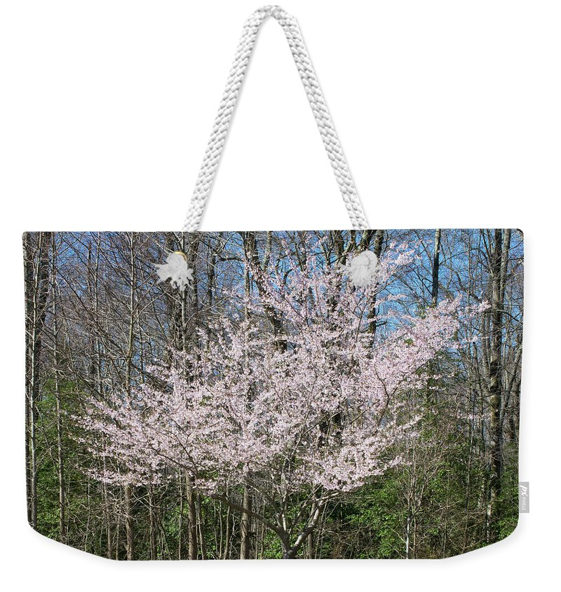 Cherry Weekender Tote Bag featuring the photograph Cherry Blossom by Margaret Koc