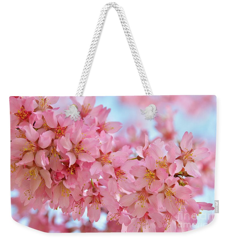 Cherry Blossoms Pink Weekender Tote Bag featuring the photograph Cherry Blossom Pastel by Regina Geoghan