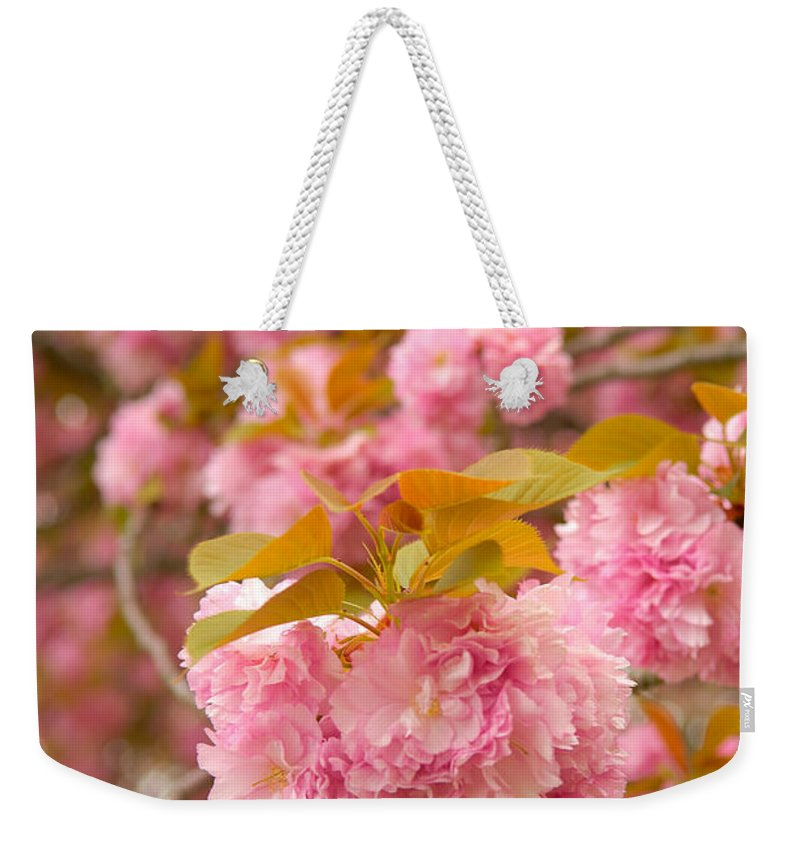 Cherry Weekender Tote Bag featuring the photograph Cherry Blossom by Sebastian Musial