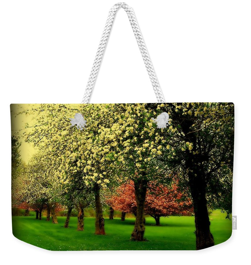 Cherry Blossom Trees Weekender Tote Bag featuring the photograph Cherry Blossom Trees by Angie Tirado