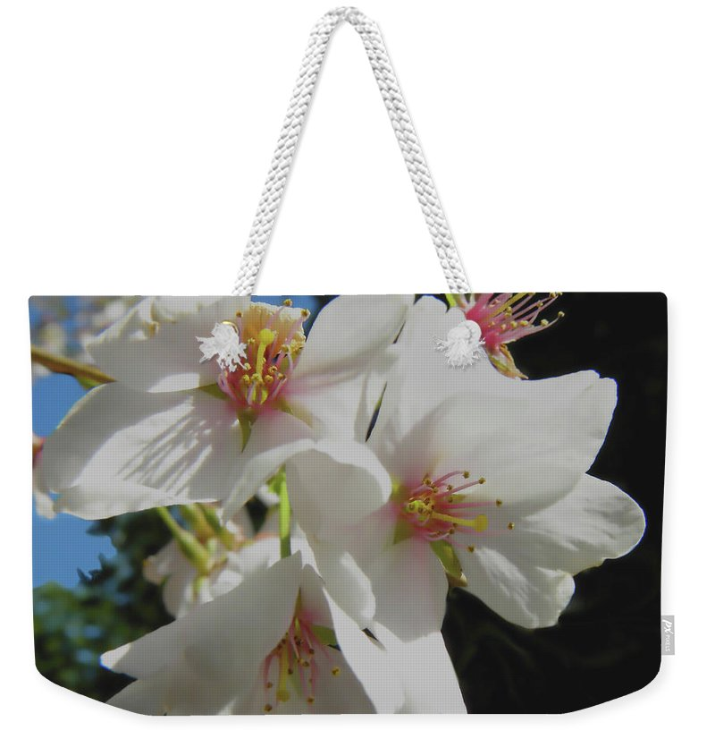 Cherry Blossoms Weekender Tote Bag featuring the photograph Cherry Blossoms by Sandi OReilly