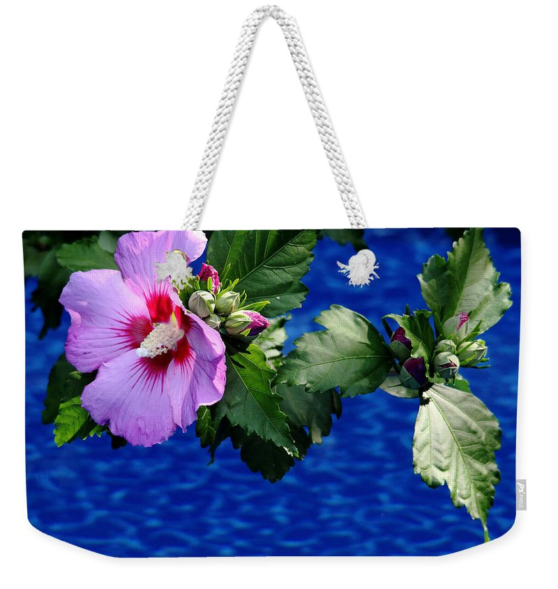 Rose Of Sharon Weekender Tote Bag featuring the photograph Cherry Throat by Debbie Oppermann