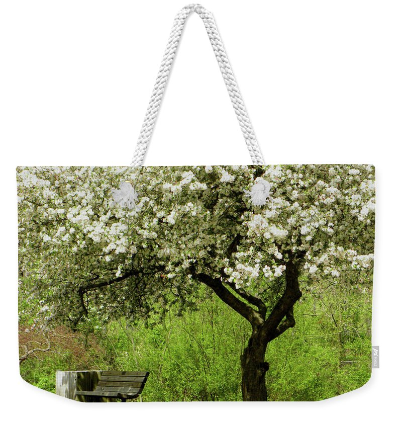 Cherry Tree Weekender Tote Bag featuring the photograph Cherry Tree In Full Bloom by Sandi OReilly