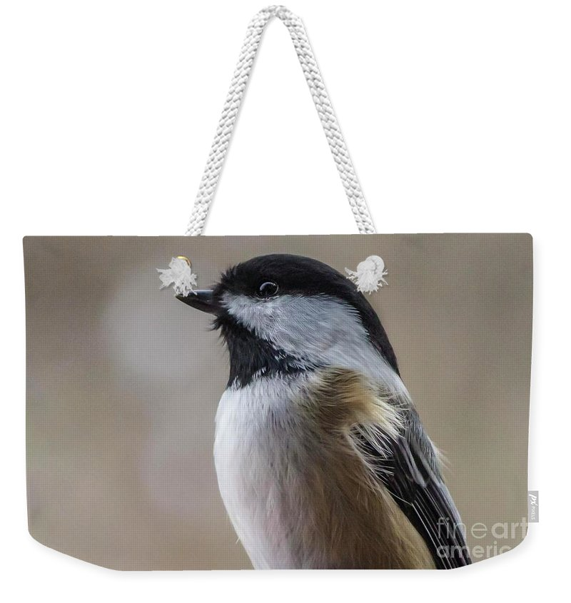 Chickadee Weekender Tote Bag featuring the photograph Chickadee Close Up by Cecille Gagne