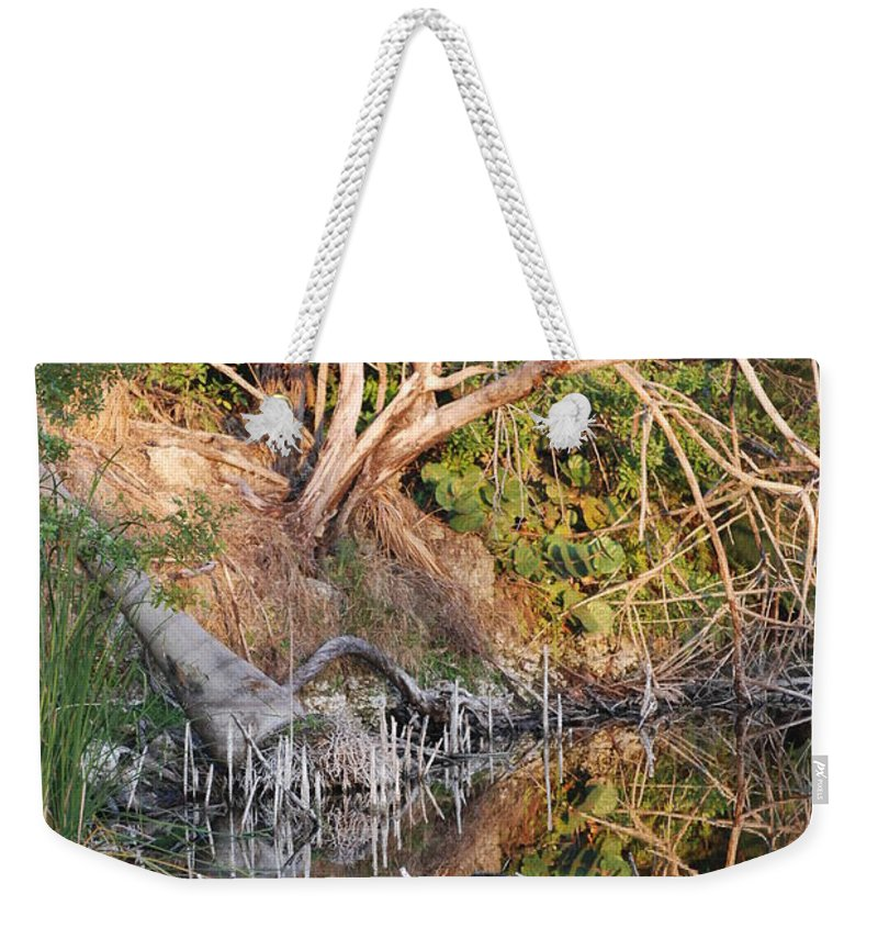 Iguana Weekender Tote Bag featuring the photograph Chilling Iguana by Rob Hans