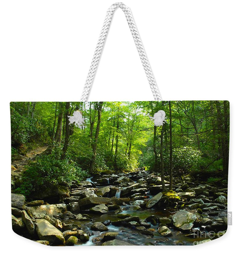 Trail Weekender Tote Bag featuring the photograph Chimney Tops Trail by David Lee Thompson
