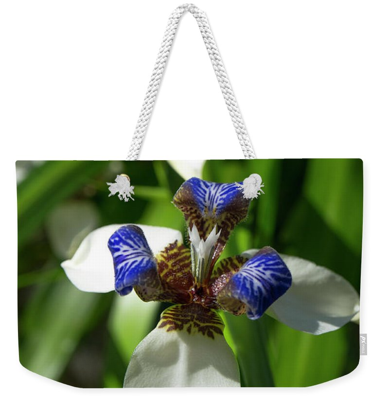 Flower Weekender Tote Bag featuring the photograph Christ Flower Vertical by Zane Kuhle