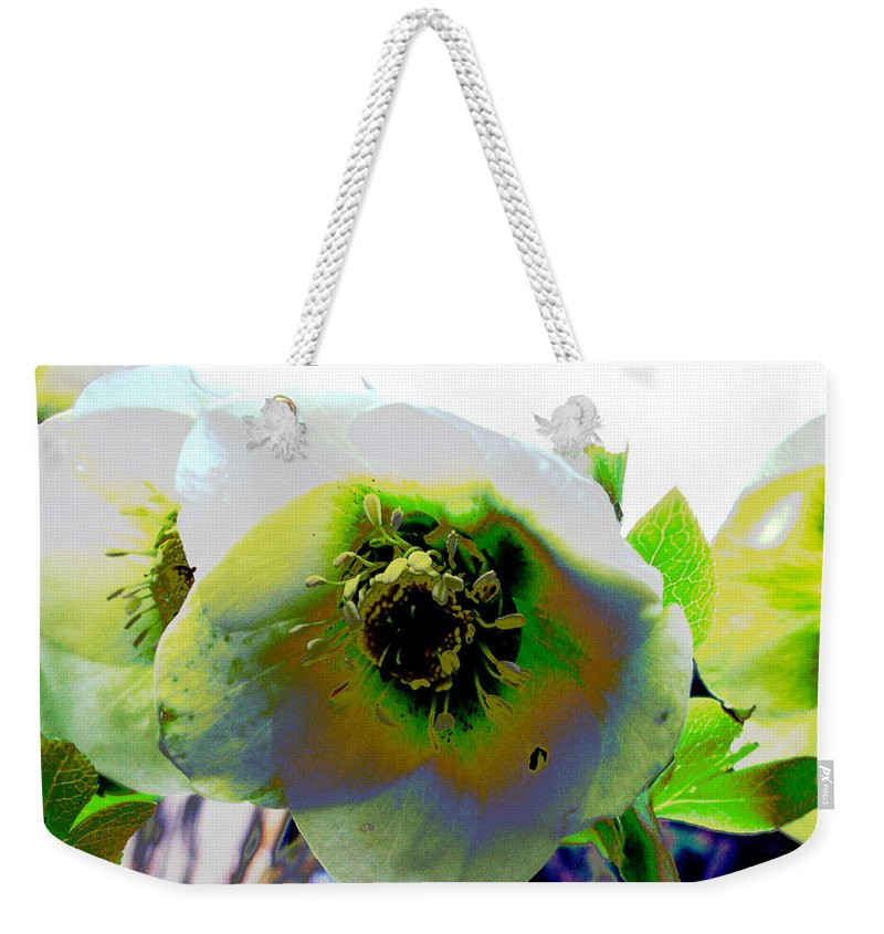 Flora Weekender Tote Bag featuring the photograph Christmas Rose by Susan Baker