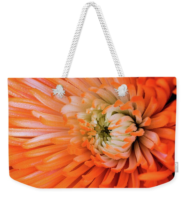Flower Weekender Tote Bag featuring the photograph Chrysanthemum Serenity by William Dahl