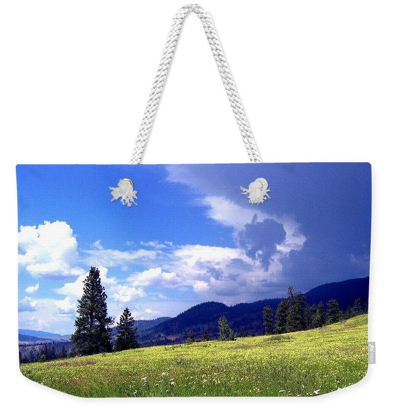Cinquefoil Weekender Tote Bag featuring the photograph Cinquefoil Blossoms by Will Borden