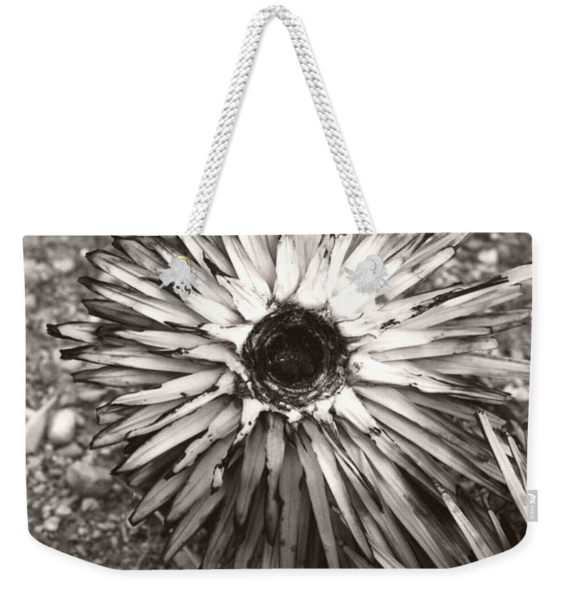 Black Weekender Tote Bag featuring the photograph Circle Top Of Joshua Tree by Heather Kirk