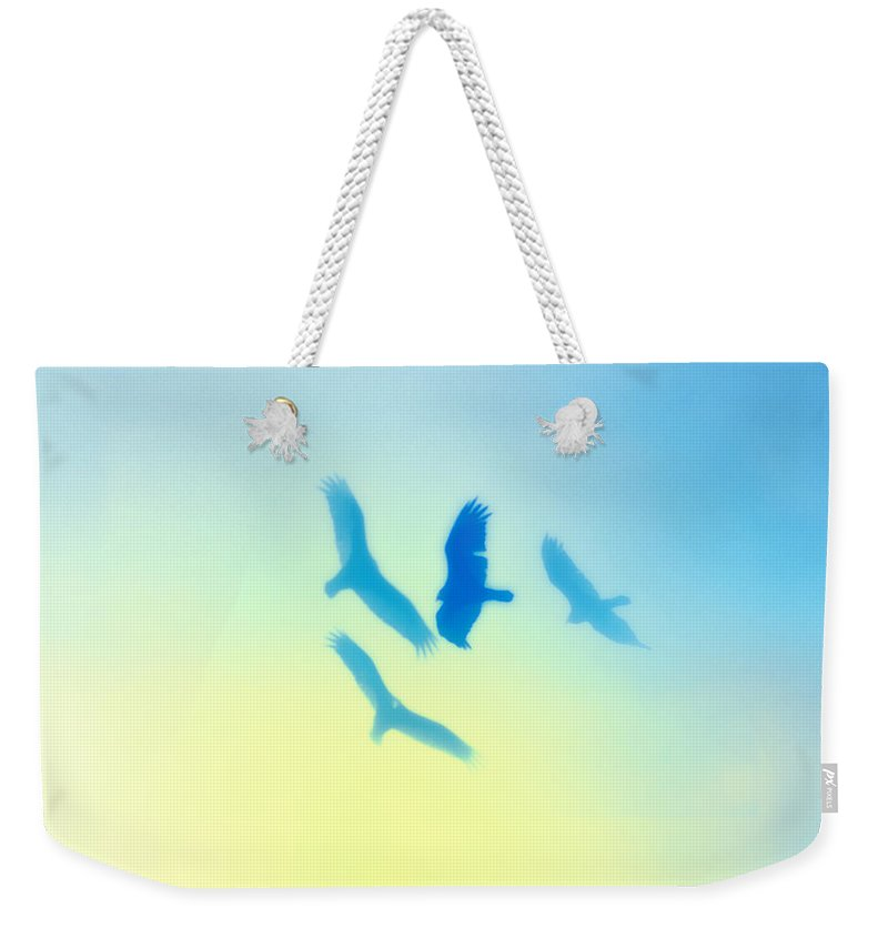 Hawks Weekender Tote Bag featuring the photograph Circling by Bill Cannon