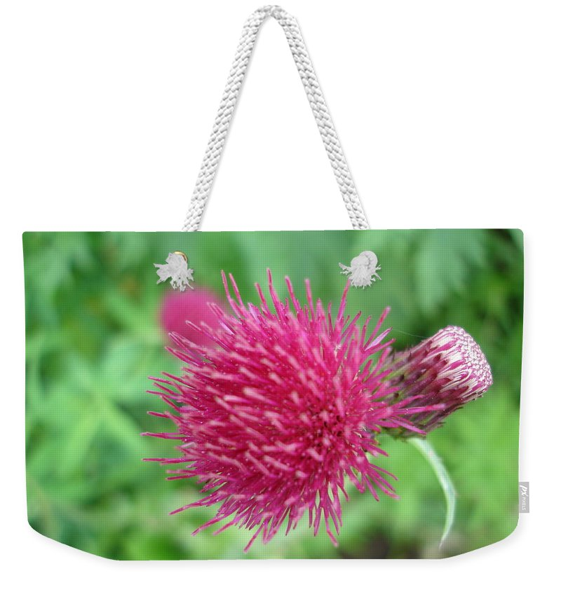 Thistle Weekender Tote Bag featuring the photograph Cirsium Burgandy Thistle by Susan Baker
