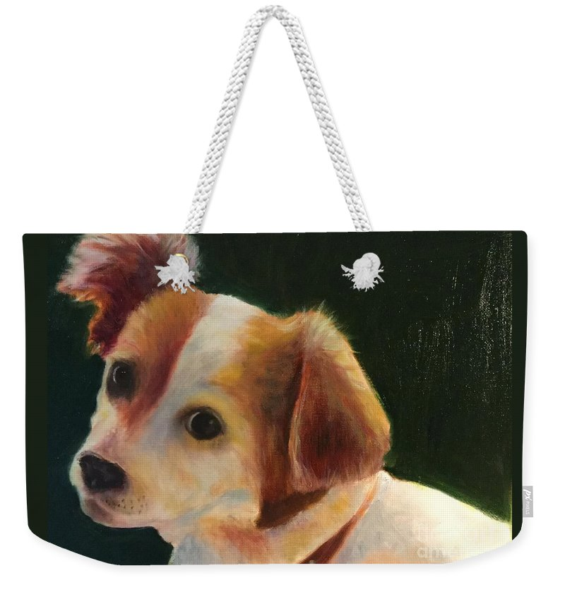 Pet Weekender Tote Bag featuring the painting Cisco by Jane Wong