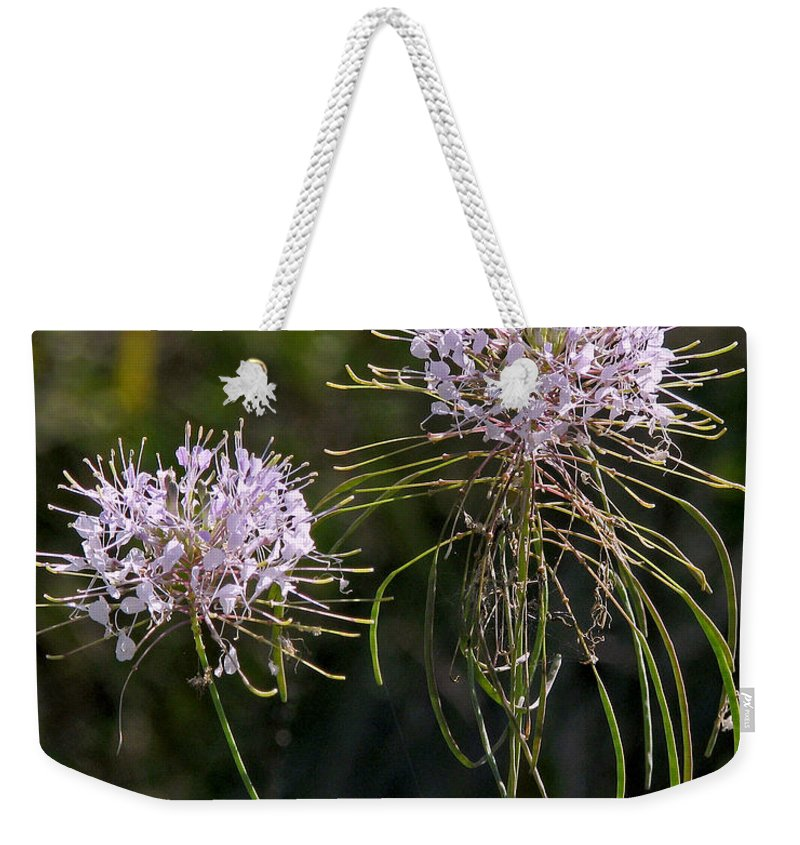 Nature Weekender Tote Bag featuring the photograph Clasping Warea by Peg Urban