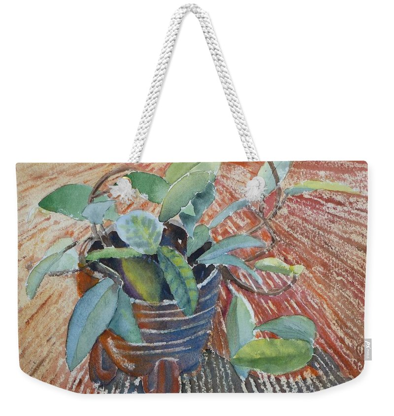 Vine Weekender Tote Bag featuring the painting Clay Pot by Ruth Kamenev