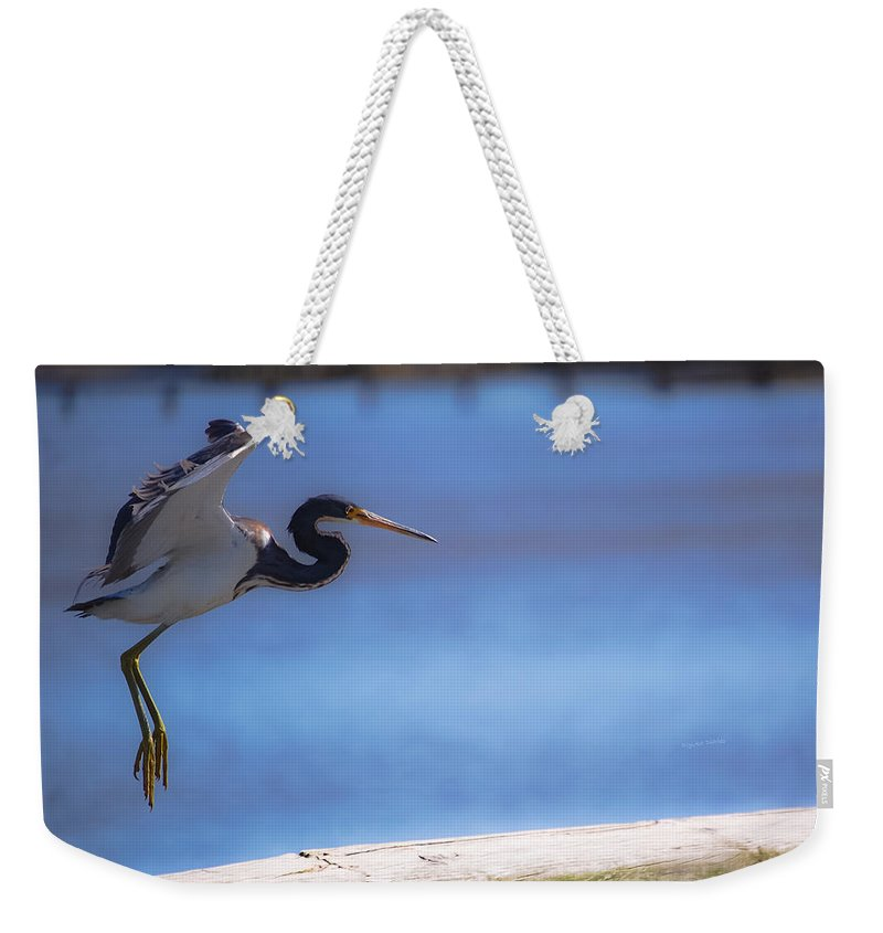 Bird Weekender Tote Bag featuring the digital art Cleared For Landing by DigiArt Diaries by Vicky B Fuller