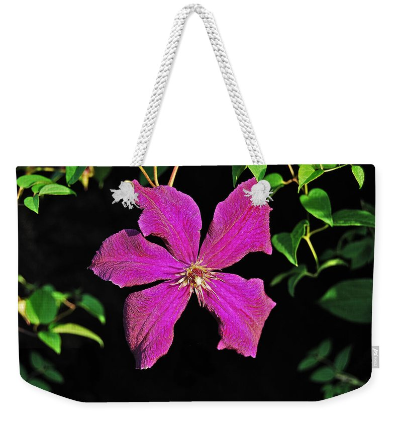 Clematis Weekender Tote Bag featuring the photograph Clematis 2598 by Michael Peychich