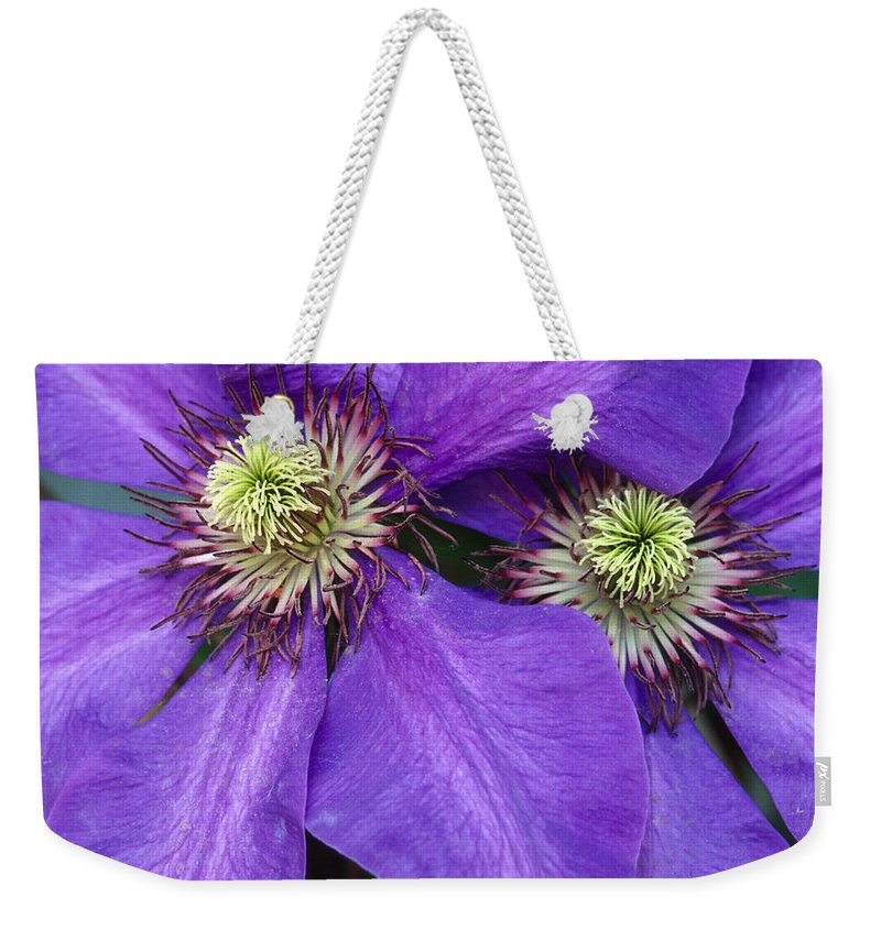 Flowers Weekender Tote Bag featuring the photograph Clematis Detail by Sandra Bronstein