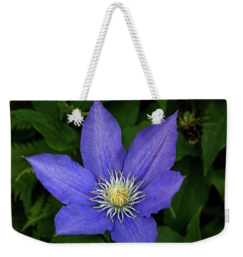Flowers Weekender Tote Bag featuring the photograph Clematis by Sandy Keeton