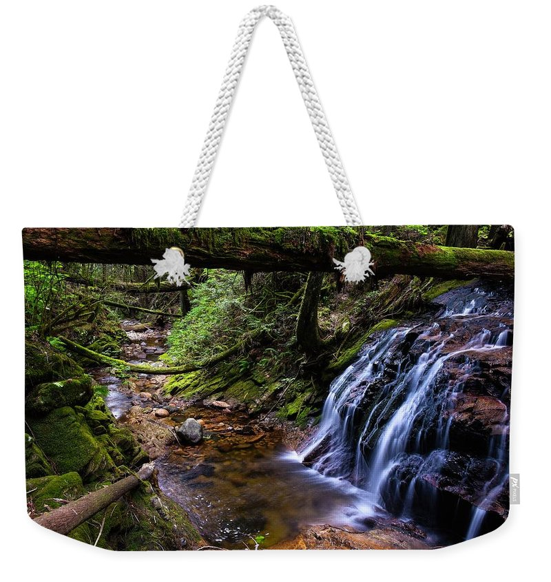 Canada Weekender Tote Bag featuring the photograph Cliff Gilker Park by Rand