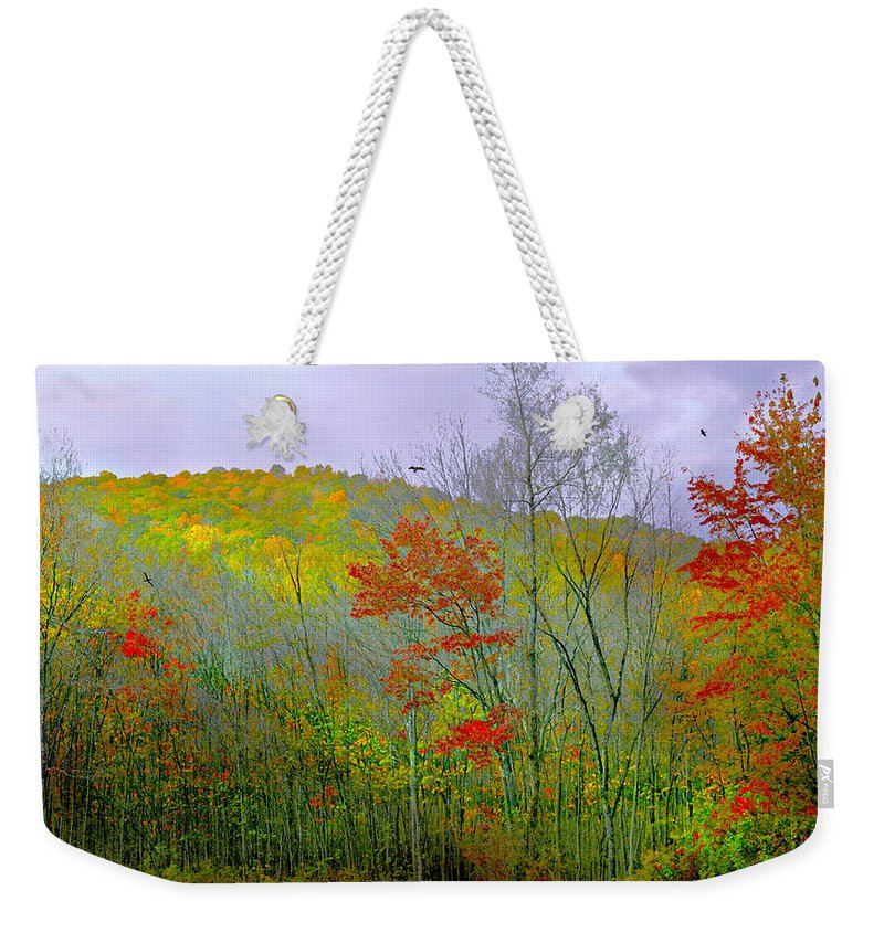 Autumn Weekender Tote Bag featuring the photograph Climb Into Autumn by Diana Angstadt